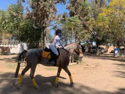 Durango's equestrian talent continues to bear great fruit
