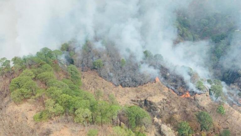 Fire in Tepoztlán, Morelos has consumed approximately 280 hectares